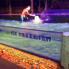 다롄 성야하이양스제(대련 성아해양세계) 여행 사진