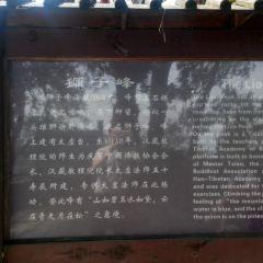 Jinyun Mountain User Photo