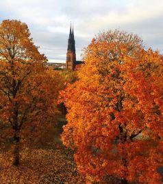 阿兰达游记图文-北欧的秋天(绝对不容错过的精华帖)