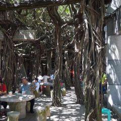Penghu Scenic Area User Photo
