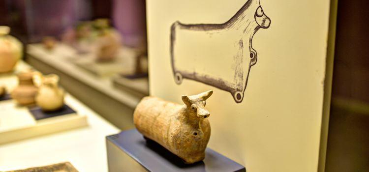 Şanlıurfa Archaeology Museum2