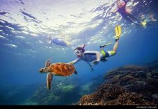 大堡礁-大堡礁-携程旅行顾问旅行屋