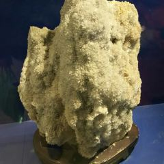 Earth Science Museum User Photo