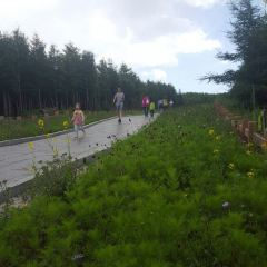 Changcheng Ling Scenic Area User Photo