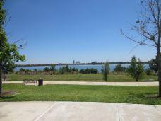 菲利普斯博士社区公园-奥兰多-湖绿紫