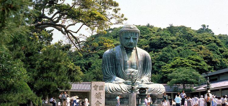 Kotokuin Great Buddha of Kamakura1