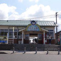 코난 대교 여행 사진