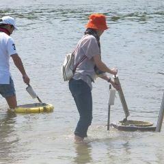 翠兒河捉泥蟹用戶圖片
