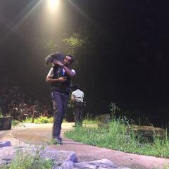 나이트 사파리 여행 사진
