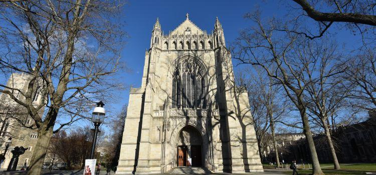 Princeton University2