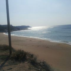 Jungmun Beach User Photo