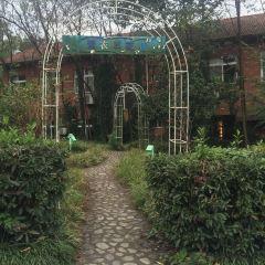 Barbizon Miller Manor User Photo