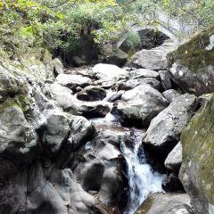 三爪崙國家森林公園用戶圖片