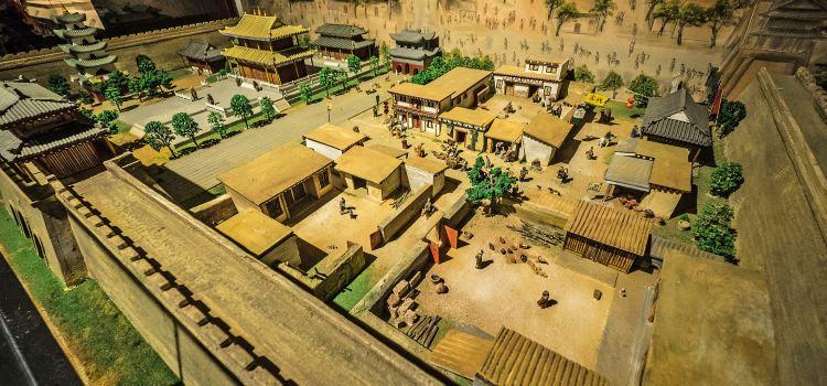 Qinghai Province Museum2