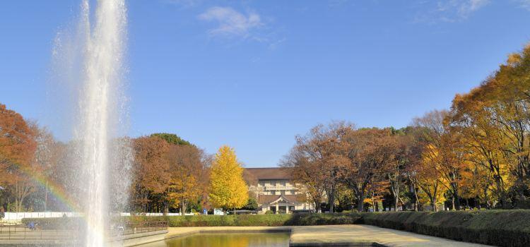 도쿄국립박물관1