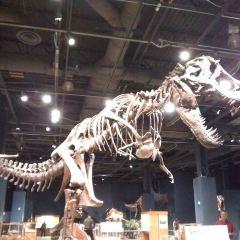 Orlando Science Center User Photo