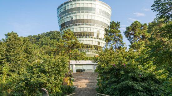 Nanshan Tree Viewing Platform