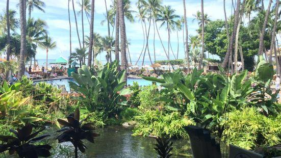 Blue Water Shrimp Hilton Hawaiian Village