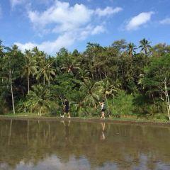 바뚜르 호수 여행 사진
