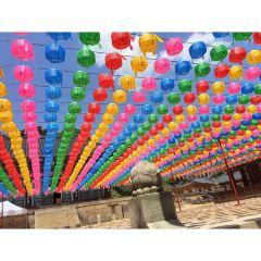 동화사 여행 사진