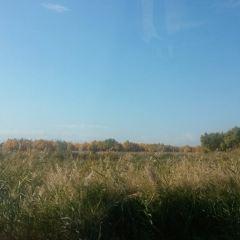 エビ湖のユーザー投稿写真