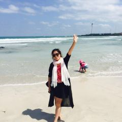 Gimnyeong Seonsegi Beach User Photo