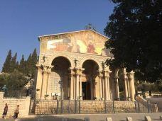 万国教堂-耶路撒冷-插了花的牛粪