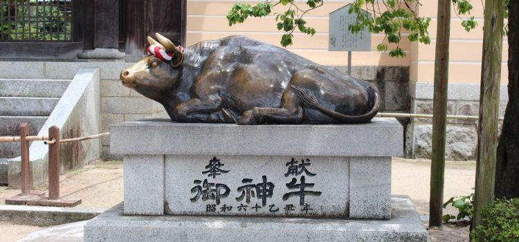 Dazaifu Tenmangū Shrine3