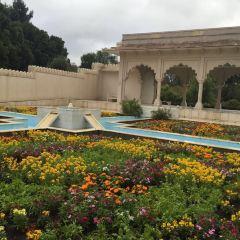 Hamilton Gardens User Photo