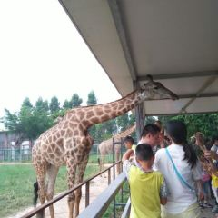 Xiangshi Zoo User Photo