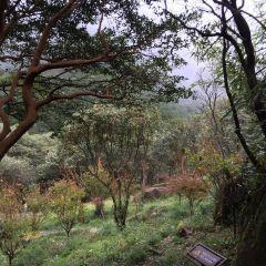 Jiuxian Mountain Scenic Area User Photo