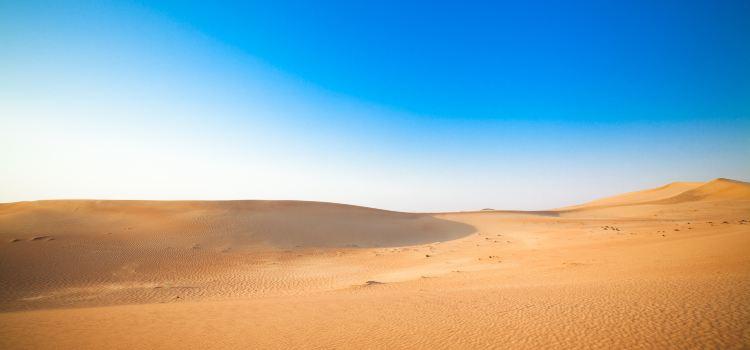 두바이 사막 보존 지역1