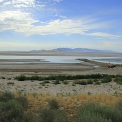 Antelope Island State Park User Photo