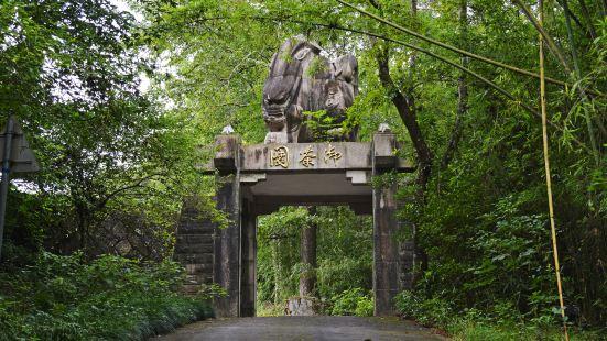 Royal Tea Garden Ruins