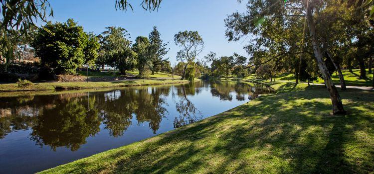 Torrens River1