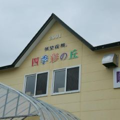 Goto Sumio Museum User Photo