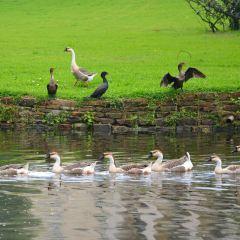 Highland Park User Photo