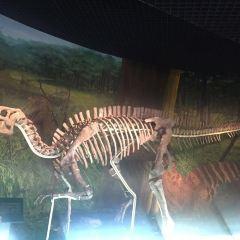 蘭州市博物館(白衣寺塔)用戶圖片