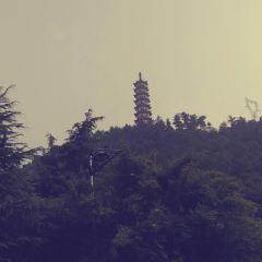 蘭蔭山用戶圖片