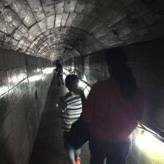 쌍용동굴 여행 사진