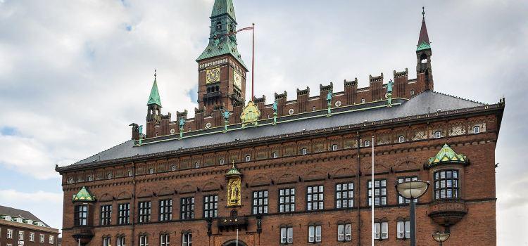 Copenhagen City Hall Square2