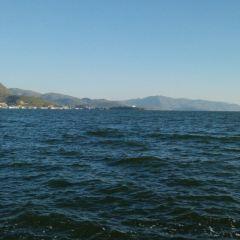 大理洱海魚鷹馴化基地用戶圖片