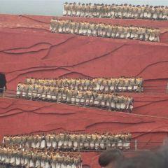 《印象麗江》演出用戶圖片