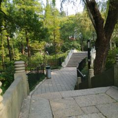Yichuan Park User Photo