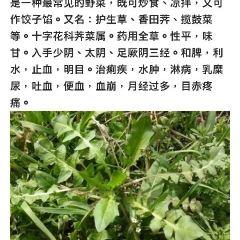 青山寺用戶圖片