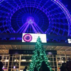 Coca-Cola Orlando Eye User Photo