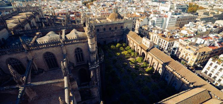 Seville Cathedral3