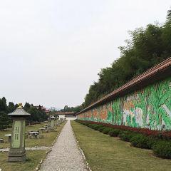 Dajue Temple User Photo