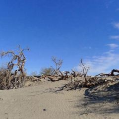 데스 밸리 국립공원 여행 사진