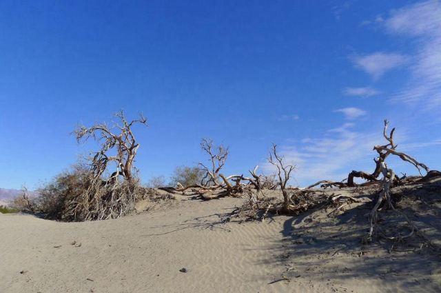 데스 밸리 국립공원